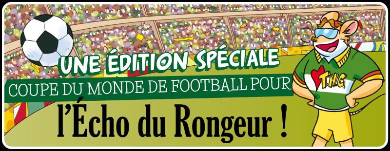 C'EST PARTI POUR LA COUPE DU MONDE DE FOOTBALL AVEC VOS ARTICLES ET DESSINS!