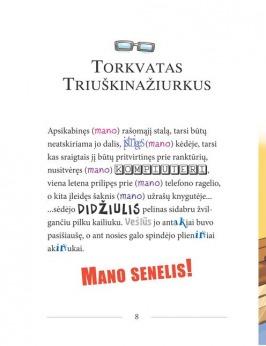 SŪRIO SPALVOS AUTOMOBILINIS NAMELIS