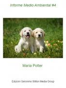 Maria Potter - Informe Medio Ambiental #4