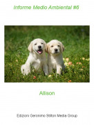 Allison - Informe Medio Ambiental #6