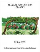 DE CALIXTO. - TRAS LOS PASOS DEL PIES GRANDES