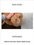 stellatopata - Gatto Giulio