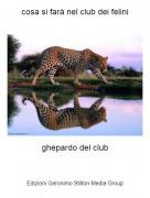 ghepardo del club - cosa si farà nel club dei felini