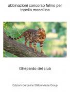 Ghepardo del club - abbinazioni concorso felino per topella monellina