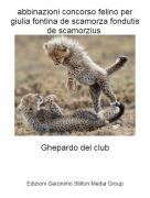 Ghepardo del club - abbinazioni concorso felino per giulia fontina de scamorza fondutis de scamorzius