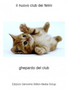 ghepardo del club - il nuovo club dei felini