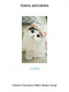 Iratita - Gatos adorables