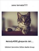 Melody4000,ghepardo del... - sono tornata!!!!!
