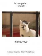 melody4000 - la mia gatta...Pinola!!!