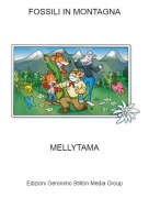 MELLYTAMA - FOSSILI IN MONTAGNA
