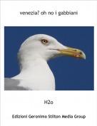 H2o - venezia? oh no i gabbiani