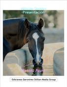 Ratona Paula - Hillside Stables·Presentación·