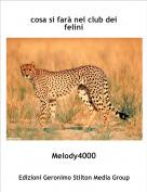 Melody4000 - cosa si farà nel club dei felini