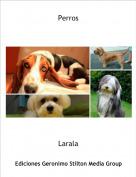 Larala - Perros