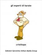 cristitopo - gli esperti di karate