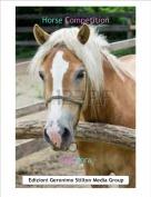 Topidora - Horse Competition