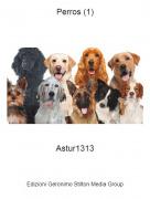 Astur1313 - Perros (1)