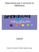 Gatto5 - Descrizione per il concorso di Mellytama