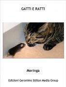Meringa - GATTI E RATTI