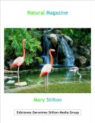 Mary Stilton - Natural Magazine