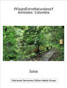 Saioa - #ViajesEntreNaturalezaYAnimales: Colombia