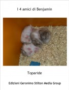 Toparide - I 4 amici di Benjamin