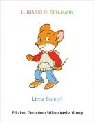 Little Bunny! - IL DIARIO DI BENJAMIN