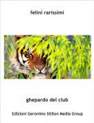 ghepardo del club - felini rarissimi