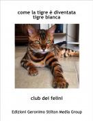 club dei felini - come la tigre è diventata tigre bianca