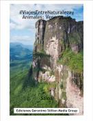 Saioa - #ViajesEntreNaturalezayAnimales: Venenzuela