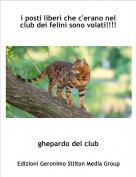 ghepardo del club - i posti liberi che c'erano nel club dei felini sono volati!!!!