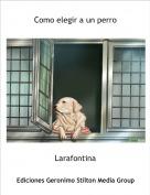Larafontina - Como elegir a un perro