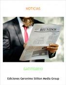 GATITO2010 - NOTICIAS