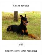tf67 - Il cane perfetto