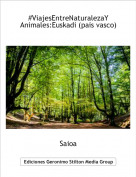 Saioa - #ViajesEntreNaturalezaYAnimales:Euskadi (pais vasco)