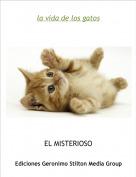 EL MISTERIOSO - la vida de los gatos