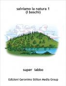 super  iabbo - salviamo la natura 1(I boschi)