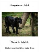Ghepardo del club - il segreto dei felini