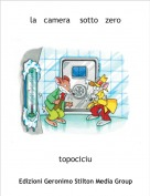 topociciu - la   camera    sotto   zero